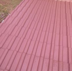 Roof defoaming and painting : After